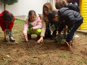 The 5th of December World Soil Day in Kindergartens